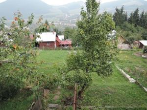 Predávame záhradnú chatku v záhradkárskej osade Vranie