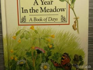 A Year In the Meadow