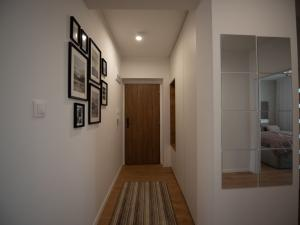 (D8.1.2.) 1-izbový byt s predzáhradkou a loggiou - rezidenčný projekt POLIANKY - Zavar