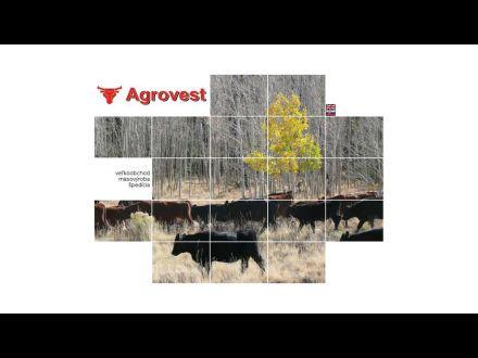 www.agrovest.sk