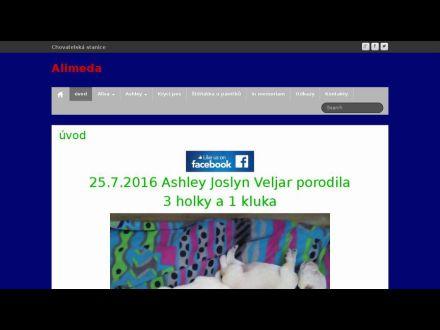 www.alimeda.cz