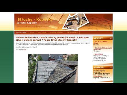 www.eshop-rychle.cz/kopecky-cz