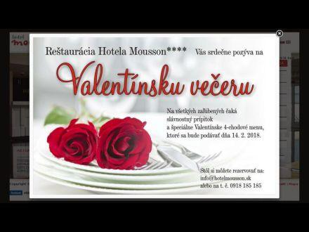 www.hotelmousson.sk