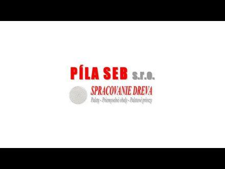 www.pilaseb.eu