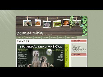 www.pankrackyvrsicek.com