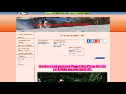 www.cindyum.wbl.sk