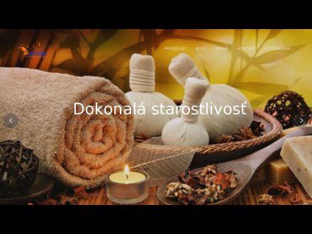 www.amija.sk/